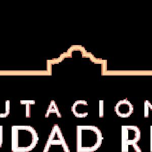 diputacion-ciudad-real